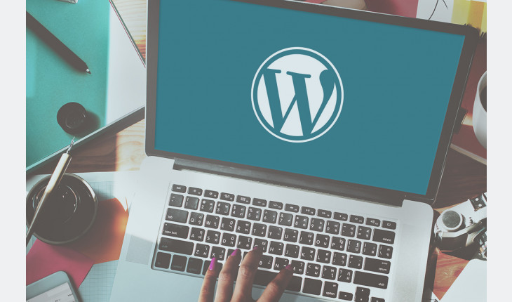 I will fix your wordpress website issues or errors